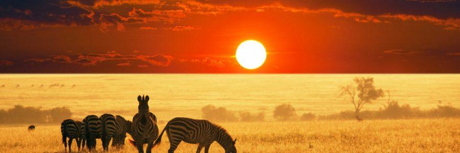 Manyara, Serengeti and Ngorongoro – 5 Days & 4 Nights
